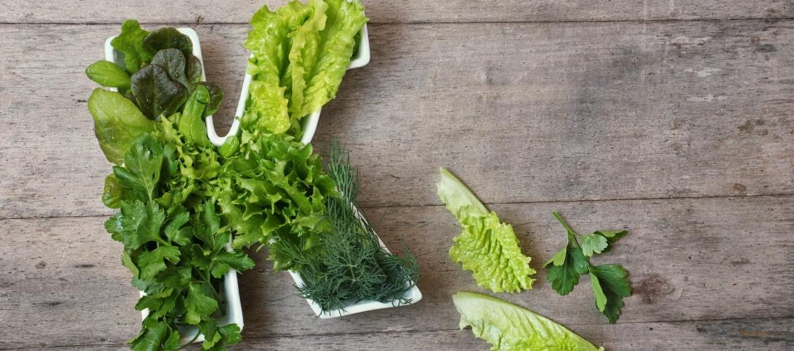 Grünes Gemüse mit hohem Vitamin-K-Gehalt